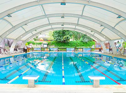 Standard adult swimming pool
